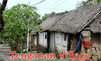 traditional house tenganan village