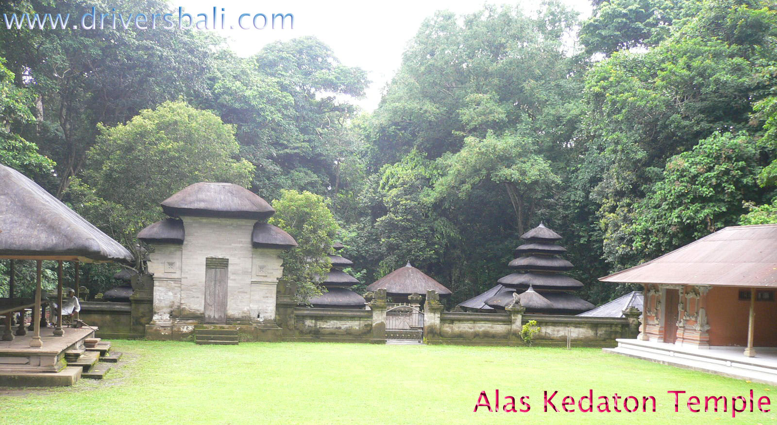 alas kedaton temple at kukuh village Bali